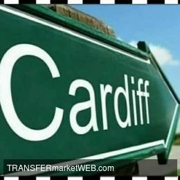 OFFICIAL - Cardiff City sign REID and SMITHIES