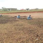 Asante Kotoko begins re-grassing of Adako Jachie training pitch