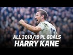 ALL OF HARRY KANE'S 2018/19 PREMIER LEAGUE GOALS