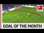 Robert Skov - November 2019's Goal of the Month Winner