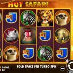 Review of Hot Safari Slot